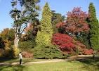 Images & Illustrations of arboretum