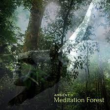 Near The <b>Lake</b> (<b>Original</b> Mix) by Ambient 11 on Amazon Music ...