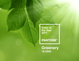 Resultado de imagem para pantone greenery marsala