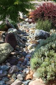 1000 ideas about drought tolerant landscape on pinterest drought tolerant drought tolerant plants and drought resistant landscaping bedroommagnificent lush landscaping ideas