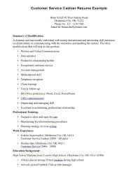 customer service resume summary  renderit cocustomer service resume summary example