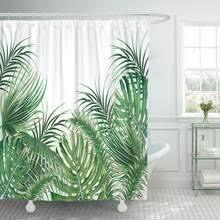 <b>Tropical Plants</b> Palm <b>Leaf</b> Green <b>Leaves Monstera</b> Promotion-Shop ...