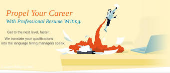 Resume Writing  amp  Job Search Services