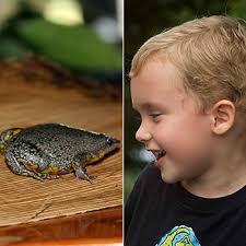 Der neue Frosch und sein Entdecker © Adam Dixon / Ilka Petersen / WWF. Der sechsjährige Camilo hat im Nord-Osten Kolumbiens einen neuen Frosch entdeckt. - 350-Froschentdecker-c-Adam-Dixon-Ilka-Petersen-WWF