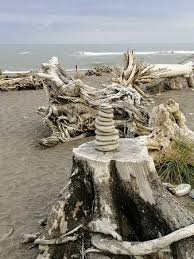 <b>Lots of</b> interesting sculptures and driftwood on the beach. - Picture of ...