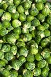 Images & Illustrations of brussels sprouts