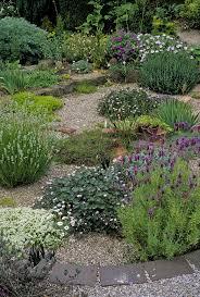 Small Picture The 25 best Dry garden ideas on Pinterest Mediterranean garden
