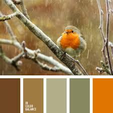 <b>серо</b>-<b>оливковый</b> цвет | IN COLOR BALANCE