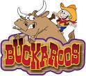 Images & Illustrations of buckaroo
