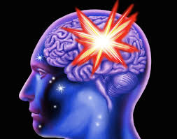 brain facts research diseases and brain images how inflammation spreads through the brain