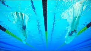 Swim England to launch Stronger Affiliation process for clubs - Swim ...