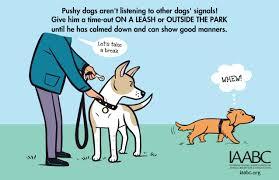 dog park posters dog park poster jpg image