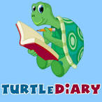 Image result for turtle diary