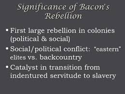 Image result for the bacon rebellion