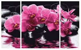 "Schipper <b>Картина по номерам</b> ""Орхидеи"" <b>50х80</b> см (9260603 ..."