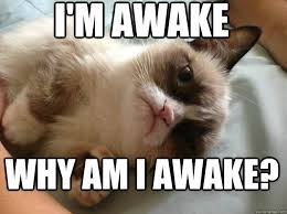 I'm awake why am i awake? - Confused Grumpy Cat - quickmeme via Relatably.com