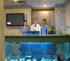 dental office about us best dental office design