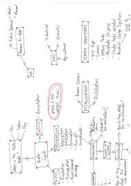 top revision tips using mind maps tutorhub blog mindmap