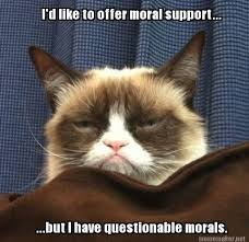 Grumpy Cat has no moral support for you! | Grumpy Cat | Pinterest ... via Relatably.com