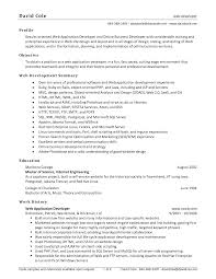 resume  summary section of resume  corezume cophd resume
