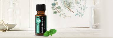 <b>PURE</b>™ <b>Peppermint Essential Oil</b> - Melaleuca
