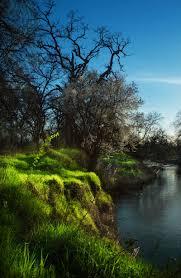 صور غابات روووعة images?q=tbn:ANd9GcQ