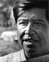 "as deceivers yet true"" essay book review farmworker movement cesar chavez"