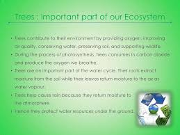 essay on importance of water college essays college application essays   water in life essay how to save water essay