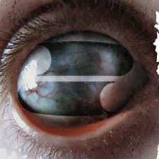 <b>Crazy</b> Eyes (<b>Filter</b> album) - Wikipedia
