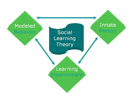 images about theories of learning on pinterest   maslow    s        images about theories of learning on pinterest   maslow    s hierarchy of needs  learning styles and educational technology