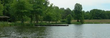 Image result for gilbert run park