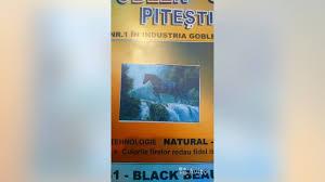 <b>Набор для вышивания Goblenset</b> 961-black beauty купить в ...