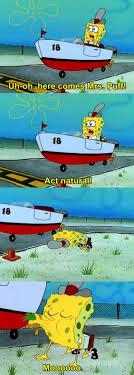 custom essays in hours later spongebob meme nobody cares quotes custom essays in 4 hours later spongebob meme nobody cares quotes