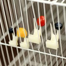 Online Shop Sale <b>2 pcs Pet Parrot</b> Fruit fork birds set on the cage ...