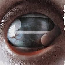 Review: <b>Filter</b> - <b>Crazy Eyes</b> | Sputnikmusic