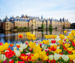 <b>Краски</b> Бельгии и Нидерландов / Направления / Туры / Туртранс ...