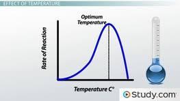 AP Biology   Enzymatic Biochemistry  Homework Help   Videos        Function of Enzymes  Environmental Effects