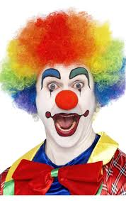 Image result for rainbow clown wig