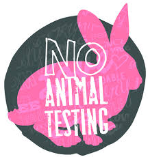 persuasive essay against animal testing brefash 1000 images about in my correct opinion animal equality on persuasive essay testing for cosmetics 2668ee196cddbe875c85181eca4