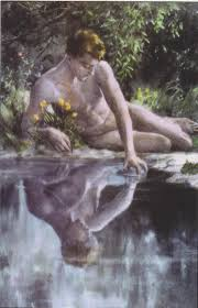 themes in fashion theory fashion and narcissus worn through