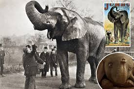 The tragic true story of <b>real Dumbo</b> – the alcoholic and abused ...