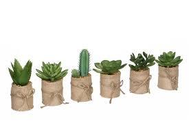 Купить <b>Искусственное растение</b> в <b>джутовом</b> кашпо Суккулент 12 ...