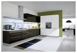 Contemporary Kitchen Cupboards Kitchen Contemporary Modern Kitchen Cabinets Design Pictures