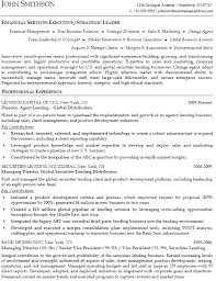 financial services executive resume example   download sample resumeprofessionally written financial services executive resume example  pdf