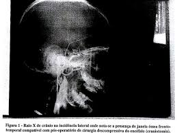 Resultado de imagem para PAULO PAVESI