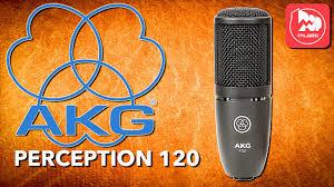 <b>AKG</b> PERCEPTION 120 (P120) - доступный студийный ...