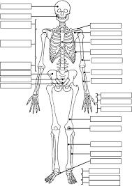17 best ideas about body diagram on pinterest physics, physics on simple circuit diagram quiz