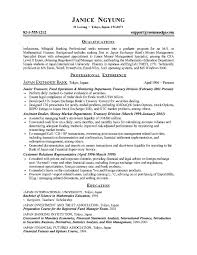 Examples Of Resume For Students  resume template high school       college resume