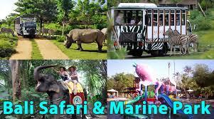 Hasil gambar untuk bali safari marine park