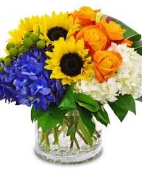 floral arrangements roses tulips hydrangea orchids happy day